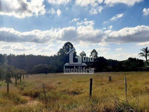 Imagem 1 de 2 de Chácara À Venda, 5000 M² Por R$ 500.000 - Zona Rural - Botucatu/sp - Ch0098