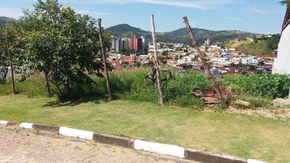 Terreno De Condomínio,loureiro, Otima Localização - V1746