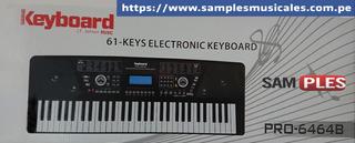 Teclado 5 Octavas Keyboard Usb Micro Sd 6464b