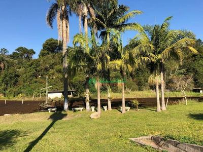 Sítio Rural À Venda, Centro (caucaia Do Alto), Cotia. - Si0058