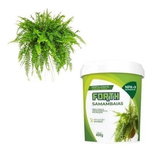 Imagem 1 de 3 de Adubo Fertilizante Forth Samambaia 400g - Crescimento