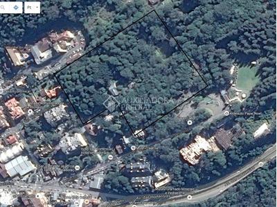 Terreno - Vila Suica - Ref: 292633 - V-292633