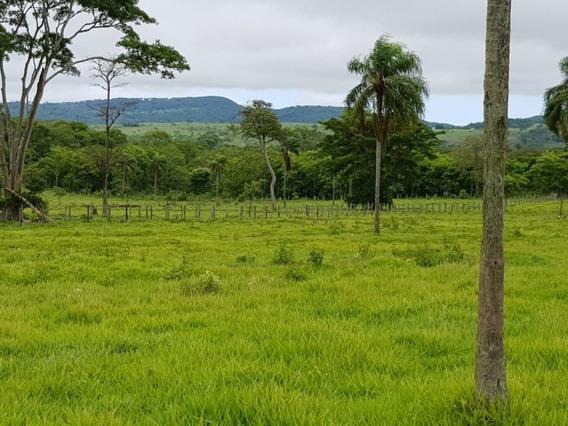 Fazenda A Venda Em Campo Grande - Ms (dupla Aptidão) - 1042