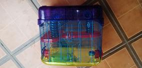 Jaula Para Hamster 2 Compartimientos