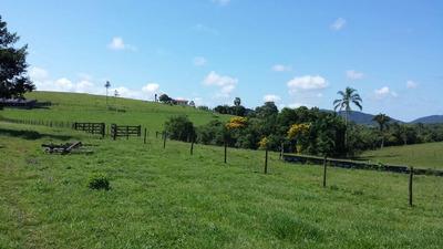 Fazenda 125 Alqueires Vale Do Ribeira-sp