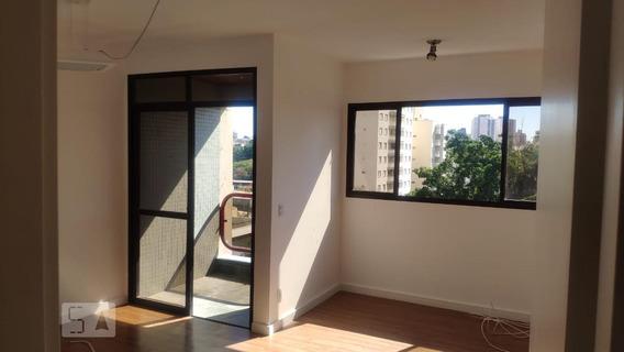 Apartamento Para Aluguel - Cambuí, 2 Quartos, 70 - 893113277