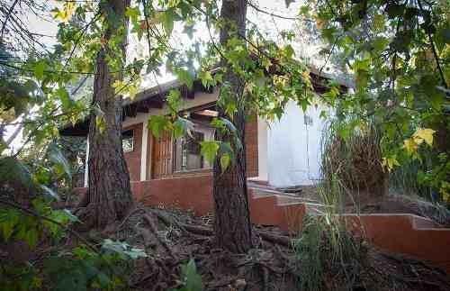Casa En Renta Palmas, El Molino