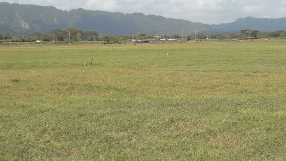 Haciendas Y Fincas En Venta En Tucacas Falcón Mpad 423619