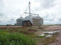 Fazenda Para Venda Em Sorriso, Área Zona Rural Santiago Do Norte/mt R$ 168.000.000 - 36767
