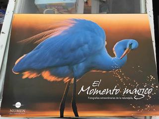 Libro De Fotografías El Momento Mágico Animales Naturaleza