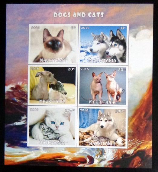 Mauritania Perros Gatos, Bloque 6 Sellos 2016 Mint L9881