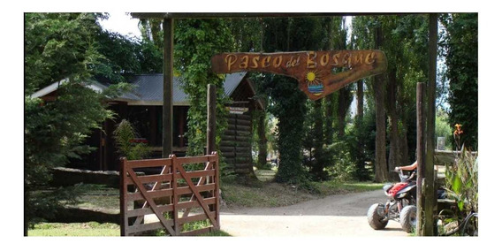 Venta Terreno Santa Teresita Paseo Del Bosque