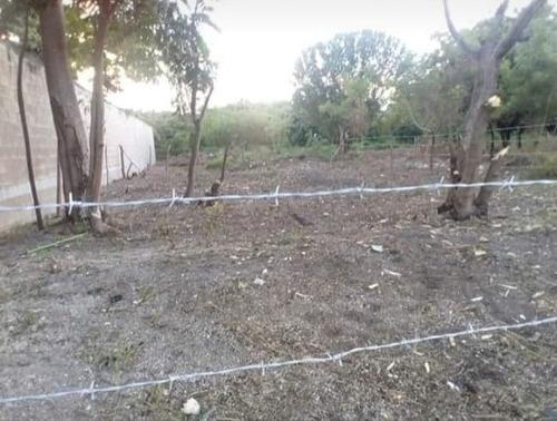 Imagen 1 de 3 de Terreno En Isla Aguada