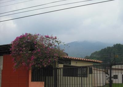 Vendo Casa En Urb El Naranjal Naguanagua 207m Sgr Bf 317016