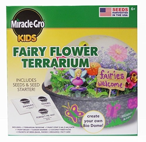 Terrario Miracle-gro Kids Fairy Flower De Horizon Group Usa