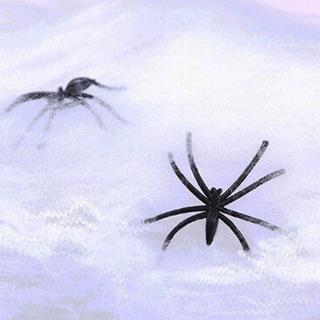 Teia De Aranha Com 2 Aranhas Halloween Festa Decoração