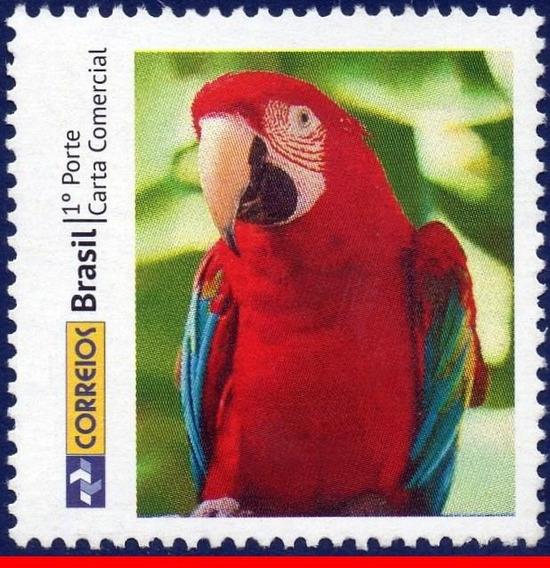 Ver Desconto C-3310 Sp-244 2013 Personalizado Arara Papagaio