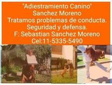 Adiestramiento Canino Sebastián Sánchez Moreno