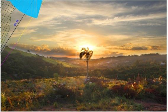 Terreno Em Vila Nova - El56356771