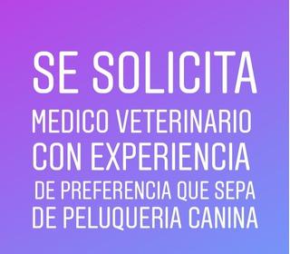 Veterinario Y Peluquero Canino Empleo