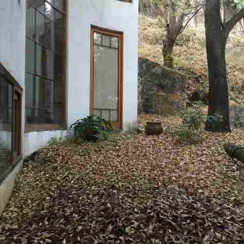 Casa 4 Recámaras Y Jardín En Limoneros