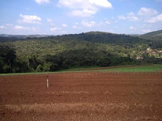 Compre Já Terrenos Em Ibiúna De 1200m² Ca.