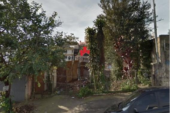 Terreno 10 X 50 M² Em Avenida Comercial Vila Formosa - Tp6546