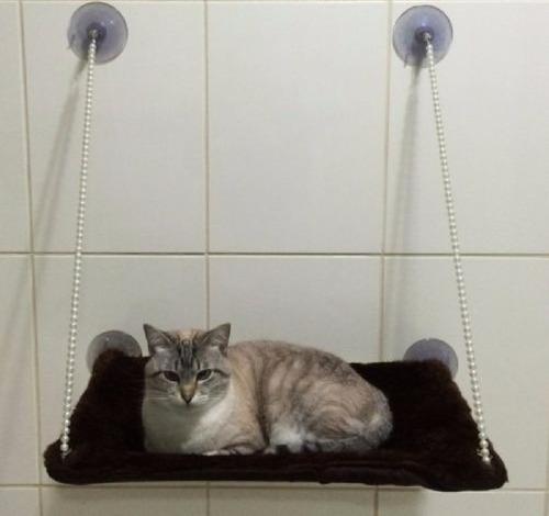 Cama Suspensa De Descanso Para Gato - Pelucia Ou Estampada