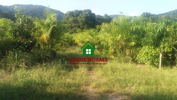 Fazenda- Área De Terreno Em Miracatu 52 Alqueires. Ref:0043