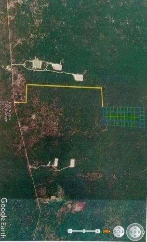 Terreno De Inversión 10,000 M2 En Tetiz