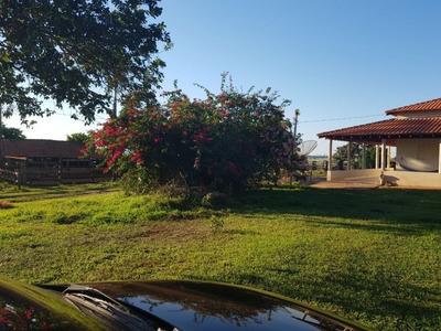 Fazenda A Venda Em Paranaíba -ms (dupla Aptidão) - 796