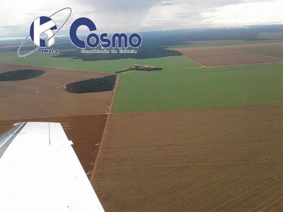 Fazenda, A Venda, Em Campo Novo Do Parecis - Mt - Fa00101 - 33867731