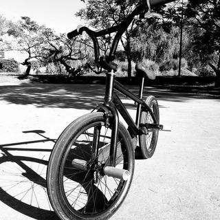 Bicicleta Bmx Se Rod20