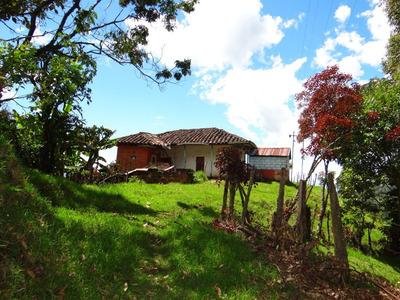 Finca En Venta Sonsón Antioquia 5 Hcta