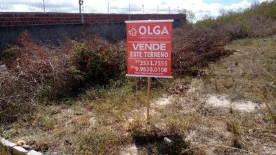 Terreno À Venda, 360 M² - Gravatá/pe - Te0409