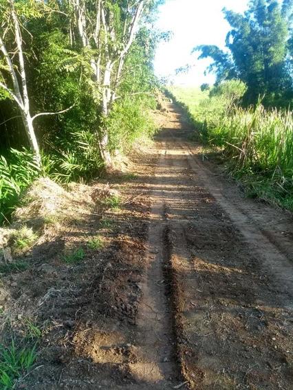 Rd Lindos Terrenos Com A Estrada Muito Boa