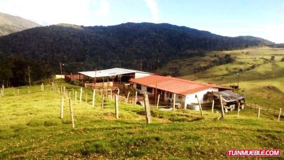 Finca Con Magníficos Terrenos Para La Agricultura