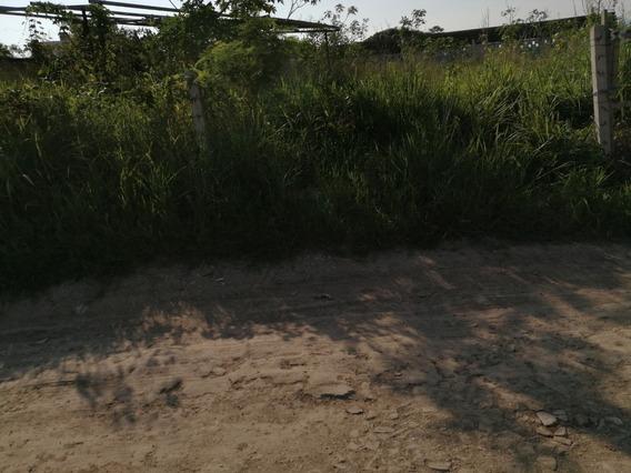 Terreno Plan De Ayala