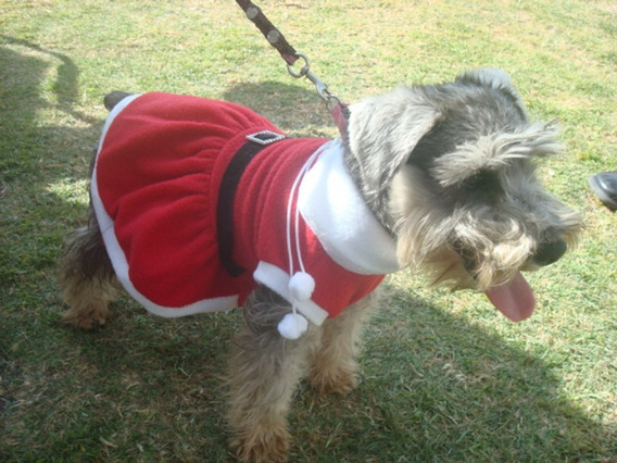 Disfraz Vestido Santa Claus Talla 3 Navidad
