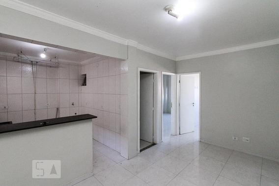 Apartamento Para Aluguel - Vila Prudente, 2 Quartos, 60 - 893057160