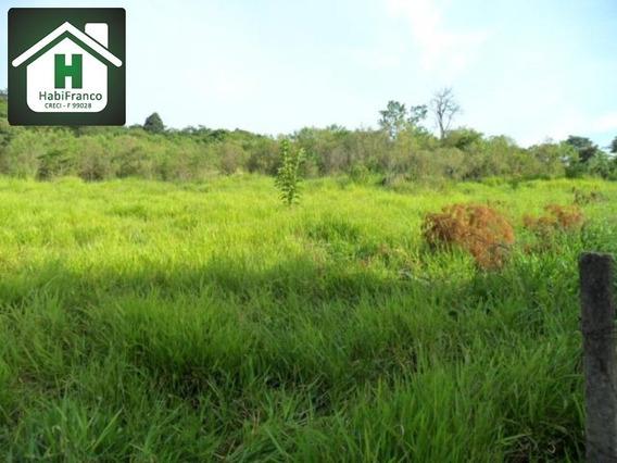 Terreno, Boa Localização, 8300m² - Te00008 - 32511544