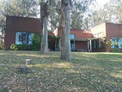 Chacra En Oportunidad Zona Jose Ignacio - Ref: 217418