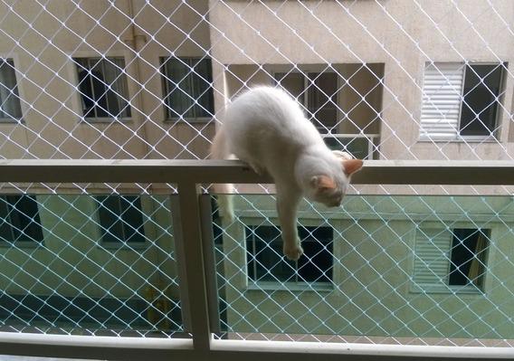 Redes Contención, Balcon, Mascota Palomas, Proteccion Chicos