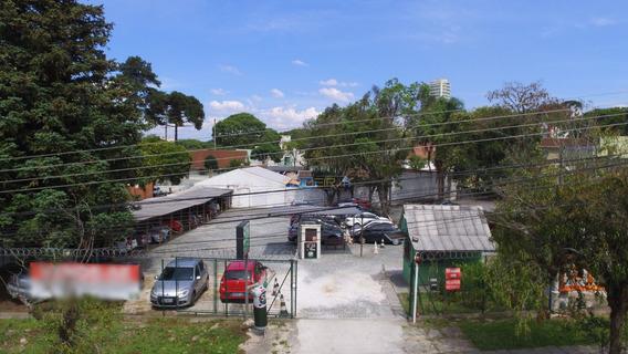Terreno Padrão Em Curitiba - Pr - Te0004_impr