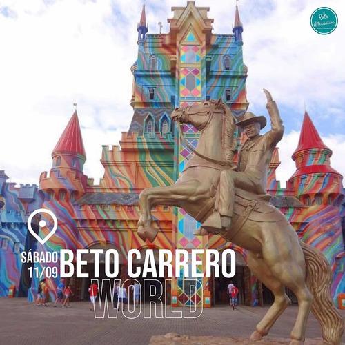 Imagem 1 de 4 de Viagem Para O Beto Carrero