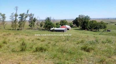 Fazenda Com 699 Hectares Para Pecuária Em Quaraí - Rs