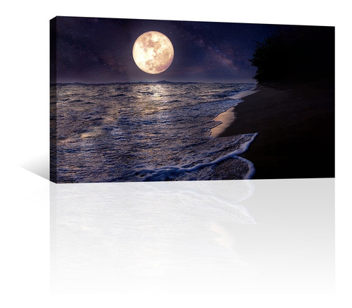 Imagen 1 de 10 de Cuadro Decorativo Naturaleza Canvas Playa Mar Luna Llena Luz
