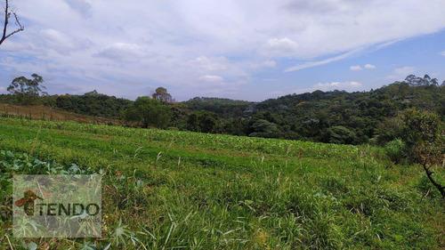 Imagem 1 de 15 de Imob03 - Área À Venda, 35000 M² Por R$ 2.500.000 - Chácara Sete Cruzes - Suzano/sp - Ar0005