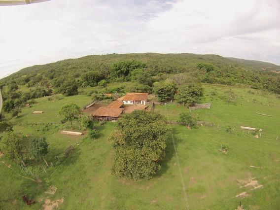 Fazenda Em Goiás, Próximo Ipameri E Caldas Novas 1818 Ha