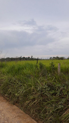 Venta De Terreno.agricola